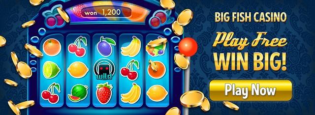 Fish casino slots game types in casino