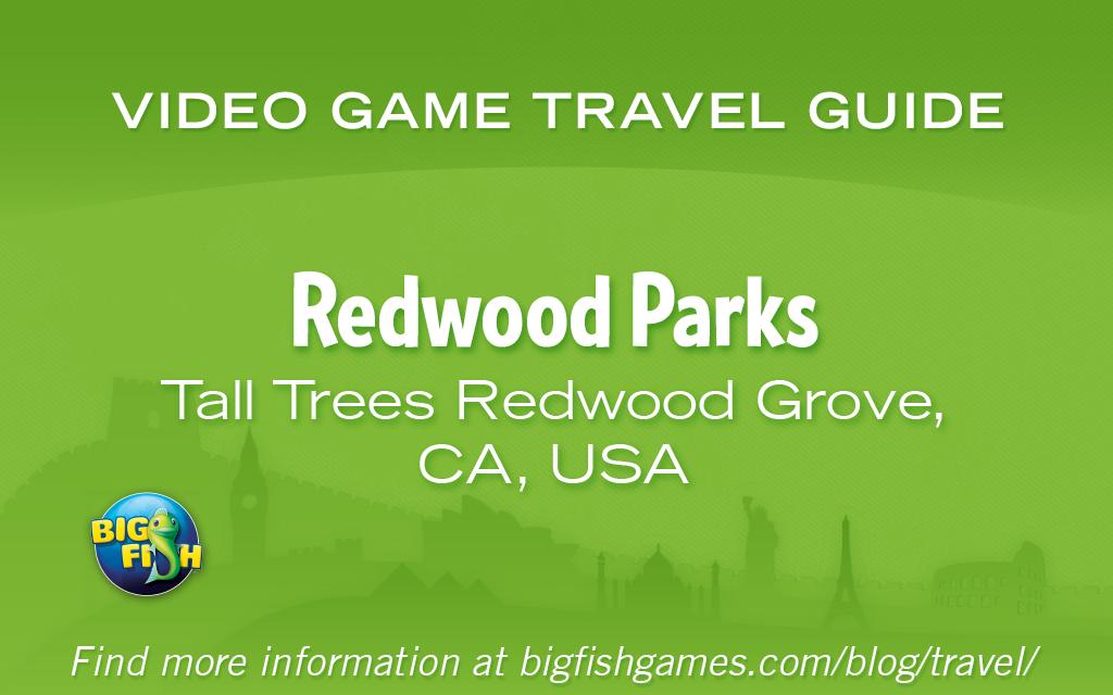 bfg-redwood-parks-tall-trees-redwood-grove-ca-usa