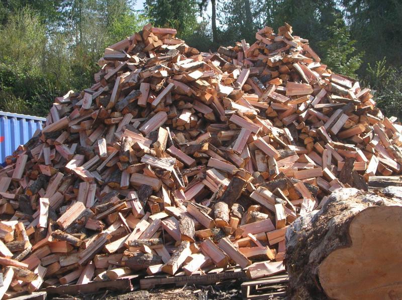 Stockpile Firewood for the Zombie Apocalypse