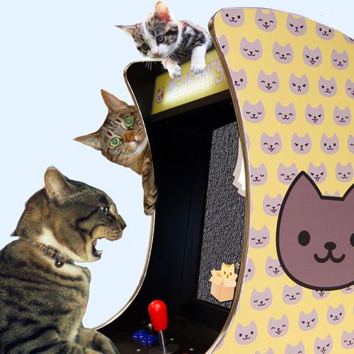 kitty Arcade